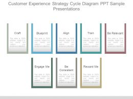 Customer Experience Strategy Cycle Diagram Ppt Sample Presentations