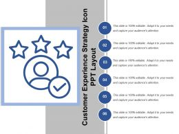 Customer Experience Strategy Icon Ppt Layout
