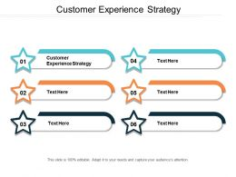 Customer Experience Strategy Ppt Powerpoint Presentation File Show Cpb