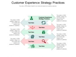 Customer Experience Strategy Practices Ppt Powerpoint Presentation Icon Cpb