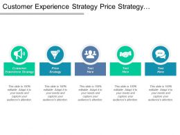 Customer Experience Strategy Price Strategy Decision Risk Analysis Cpb