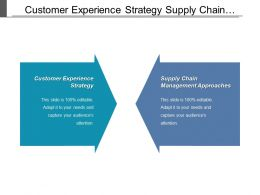 Customer Experience Strategy Supply Chain Management Approaches Price Strategies Cpb