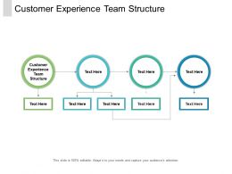 Customer Experience Team Structure Ppt Powerpoint Presentation Layouts Cpb