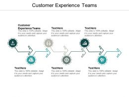Customer Experience Teams Ppt Powerpoint Presentation Professional Aids Cpb