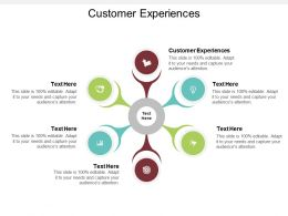 Customer Experiences Ppt Powerpoint Presentation Professional Influencers Cpb