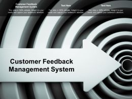 Customer Feedback Management System Ppt Powerpoint Presentation Layouts Example Topics Cpb