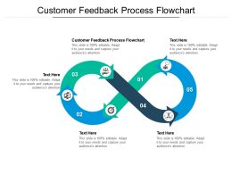 Customer Feedback Process Flowchart Ppt Powerpoint Presentation Slides Graphics Pictures Cpb