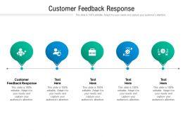 Customer Feedback Response Ppt Powerpoint Presentation Layouts Microsoft Cpb