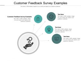 Customer Feedback Survey Examples Ppt Powerpoint Presentation Professional Show Cpb