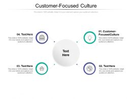Customer Focused Culture Ppt Powerpoint Presentation Styles Example Cpb