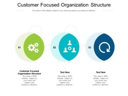 Customer Focused Organization Structure Ppt Powerpoint Inspiration Ideas Cpb