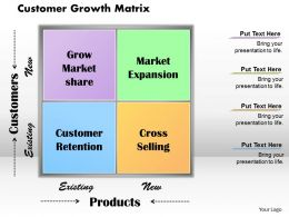 Customer Growth Matrix Powerpoint Presentation Slide Template