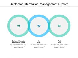 Customer Information Management System Ppt Powerpoint Presentation Styles Designs Download Cpb