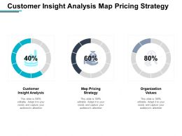 Customer Insight Analysis Map Pricing Strategy Organization Values Cpb