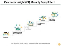 Customer Insight Ci Maturity Template 1 Ppt Inspiration Example