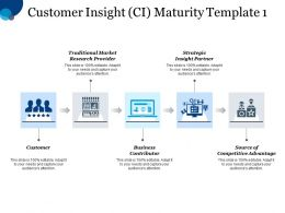 Customer Insight Ci Maturity Template Traditional Market Research Provider