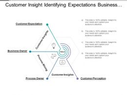 Customer Insight Identifying Expectations Business And Process Owner