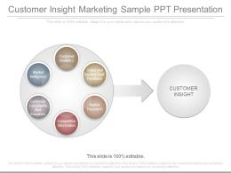 Customer Insight Marketing Sample Ppt Presentation
