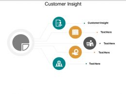 Customer Insight Ppt Powerpoint Presentation Layouts Skills Cpb