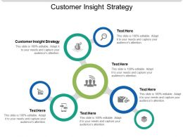 Customer Insight Strategy Ppt Powerpoint Presentation Slides Pictures Cpb