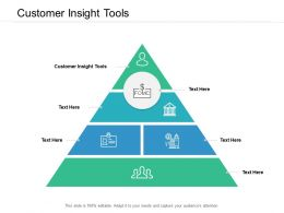 Customer Insight Tools Ppt Powerpoint Presentation Gallery Portfolio Cpb