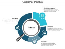 Customer Insights Ppt Powerpoint Presentation File Slide Download Cpb