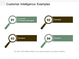 Customer Intelligence Examples Ppt Powerpoint Presentation File Vector Cpb