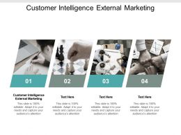 Customer Intelligence External Marketing Ppt Powerpoint Presentation Gallery Slides Cpb