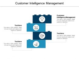 Customer Intelligence Management Ppt Powerpoint Presentation Layouts Pictures Cpb