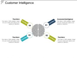 Customer Intelligence Ppt Powerpoint Presentation Infographic Template Visual Aids Cpb