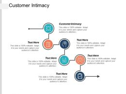Customer Intimacy Ppt Powerpoint Presentation Ideas Graphic Images Cpb
