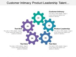 Customer Intimacy Product Leadership Talent Experience Marketing Mix