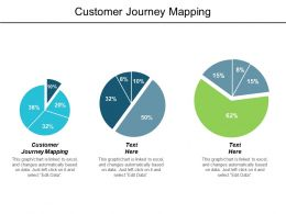 Customer Journey Mapping Ppt Powerpoint Presentation Infographics Picture Cpb
