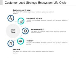 Customer Lead Strategy Ecosystem Life Cycle Architecture Erp Cpb