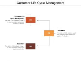 Customer Life Cycle Management Ppt Powerpoint Presentation File Layout Cpb