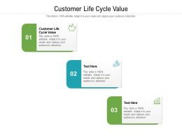 Customer Life Cycle Value Ppt Powerpoint Presentation Summary Structure Cpb