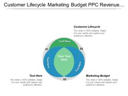 Customer Lifecycle Marketing Budget Ppc Revenue Marketing Channel Cpb
