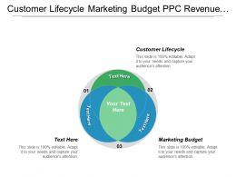 Customer Lifecycle Marketing Budget Ppc Revenue Marketing Channel Cpb