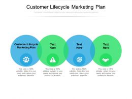 Customer Lifecycle Marketing Plan Ppt Powerpoint Presentation Outline Structure Cpb