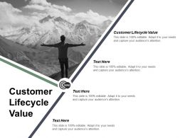 Customer Lifecycle Value Ppt Powerpoint Presentation Infographic Template Visuals Cpb
