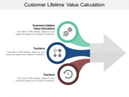 Customer Lifetime Value Calculation Ppt Powerpoint Presentation Styles Design Templates Cpb