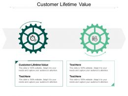 Customer Lifetime Value Ppt Powerpoint Presentation Slides Demonstration Cpb
