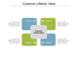 Customer Lifetime Value Ppt Powerpoint Presentation Summary Portrait Cpb