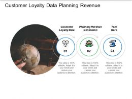 Customer Loyalty Data Planning Revenue Generation Marketing Processes Cpb