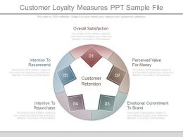 Customer Loyalty Measures Ppt Sample File