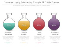 Customer Loyalty Relationship Example Ppt Slide Themes
