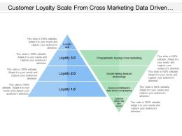 Customer Loyalty Scale From Cross Marketing Data Driven Campaigning