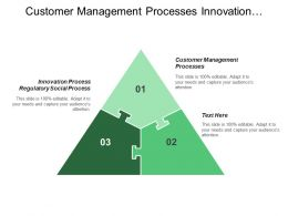 Customer Management Processes Innovation Process Regulatory Social Process