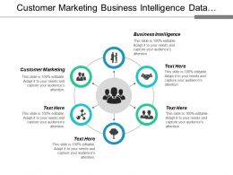 Customer Marketing Business Intelligence Data Transformation Working Capital Strategy Cpb