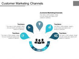 Customer Marketing Channels Ppt Powerpoint Presentation Infographics Styles Cpb